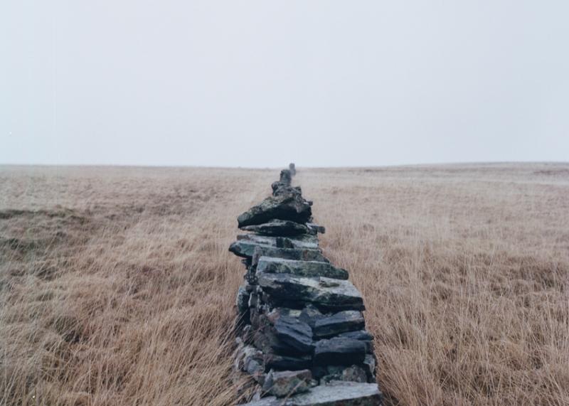 Wall Border -2